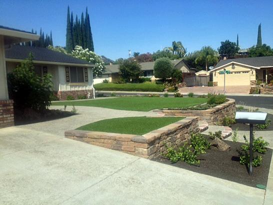 Artificial Lawn East Palo Alto, California Rooftop, Front Yard Design artificial grass