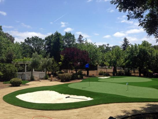 Artificial Grass Photos: Artificial Turf Cost Crows Landing, California Putting Green Turf, Front Yard Landscape Ideas