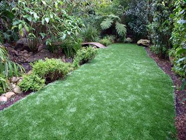 Artificial Grass Photos: Artificial Turf Cost Larkfield-Wikiup, California Paver Patio, Backyard Designs
