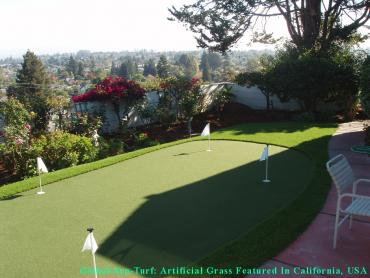 Artificial Grass Photos: Best Artificial Grass Milpitas, California Putting Green Carpet, Backyard Makeover