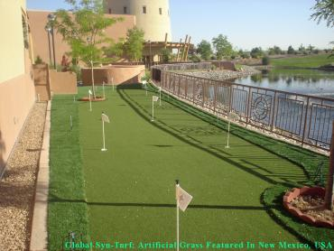 Fake Grass Carpet Fruitdale, California Putting Green Grass, Backyard artificial grass