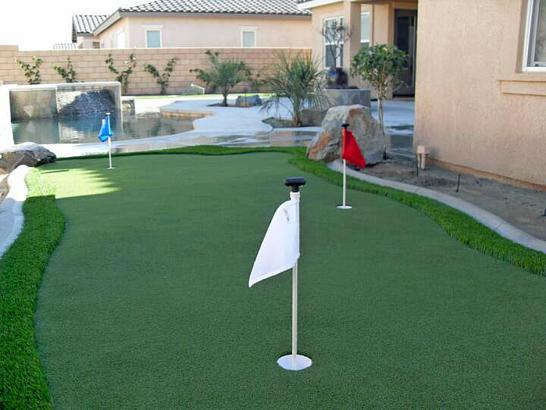 Artificial Grass Photos: Fake Grass Vallejo, California Lawn And Garden, Backyard Landscaping Ideas