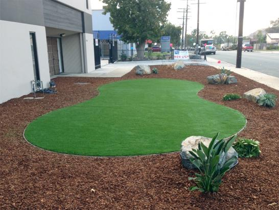 Fake Turf Diablo, California Backyard Playground, Commercial Landscape artificial grass