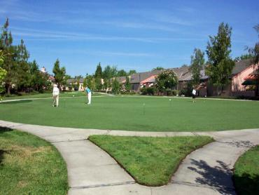 Artificial Grass Photos: Faux Grass Bodega, California Landscape Design, Commercial Landscape