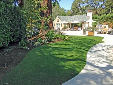 Artificial Grass Photos: Grass Installation French Camp, California Landscape Ideas, Commercial Landscape