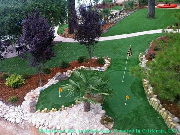 Grass Turf San Jose, California Lawn And Landscape, Backyards artificial grass