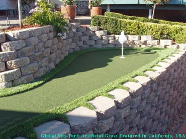 Green Lawn Alum Rock, California Landscape Design, Backyard Landscaping Ideas artificial grass
