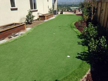 Artificial Grass Photos: How To Install Artificial Grass Soledad, California Landscape Design, Backyard