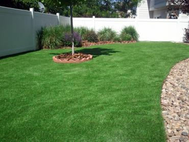Installing Artificial Grass Morgan Hill, California Landscape Photos, Backyard Ideas artificial grass