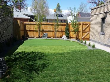 Artificial Grass Photos: Outdoor Carpet Montara, California Backyard Deck Ideas, Backyard Landscaping Ideas