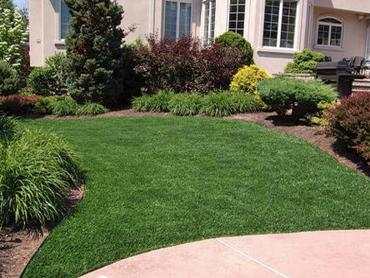 Artificial Grass Photos: Plastic Grass Lafayette, California Lawns, Landscaping Ideas For Front Yard