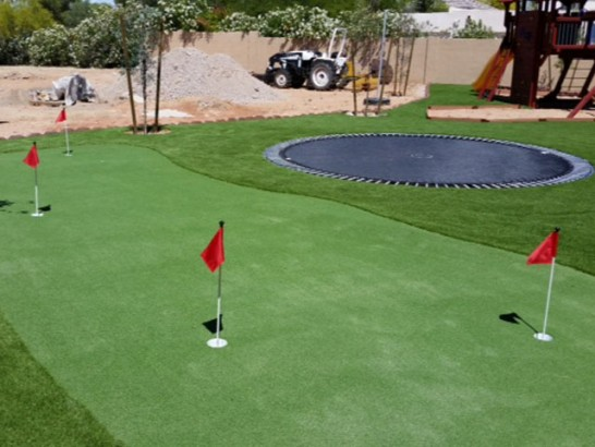Artificial Grass Photos: Synthetic Lawn Dillon Beach, California Artificial Putting Greens, Backyard Garden Ideas