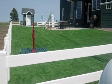 Artificial Grass Photos: Synthetic Lawn Hood, California Backyard Playground, Front Yard