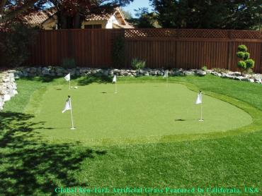 Synthetic Turf Cambrian Park, California City Landscape, Backyard Design artificial grass