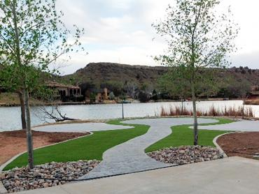 Synthetic Turf Sunol, California Landscape Design artificial grass